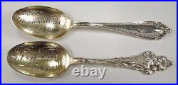 Antique Lot 10 All State of Minnesota USA Etched Sterling Silver Souvenir Spoons