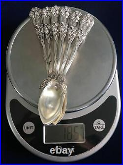 Very Rare -Iris 1900by Durgin Sterling Silver Grapefruit 6 Spoons 5 7/8